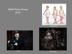SRGB Salon 2014